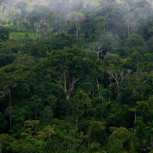 Nisza ekologiczna isiedlisko