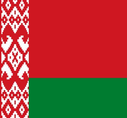 Władza wykonawcza wwybranym kraju owadliwej demokracji – Białoruś