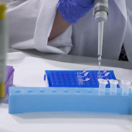 Sekwencjonowanie DNA ijego znaczenie