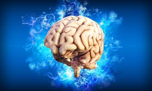 Układ nerwowy somatyczny