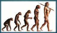 Pochodzenie człowieka. Obsługa MS PowerPoint