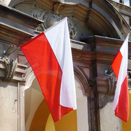 Instytucjonalizacja partii politycznych wPolsce