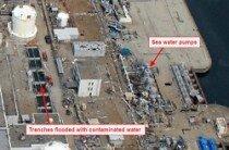 Awaria wElektrowni Jądrowej Fukushima Dai-ichi