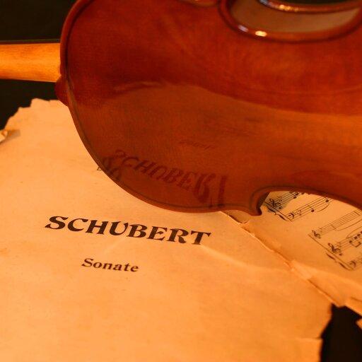 Wybrani kompozytorzy XIX w. – Franz Schubert.