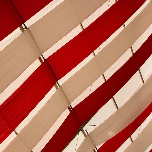 Przejawy patriotyzmu