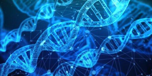 Od chromatyny do chromosomu
