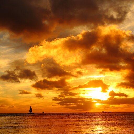 Obrazy malowane światłem ikolorem - twórczość Cloude'a Moneta