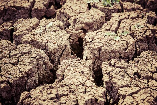 Przykłady negatywnego oddziaływania człowieka na gleby