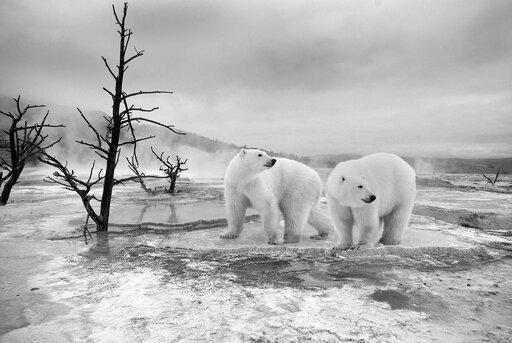 Globalne ocieplenie ijego przyczyny